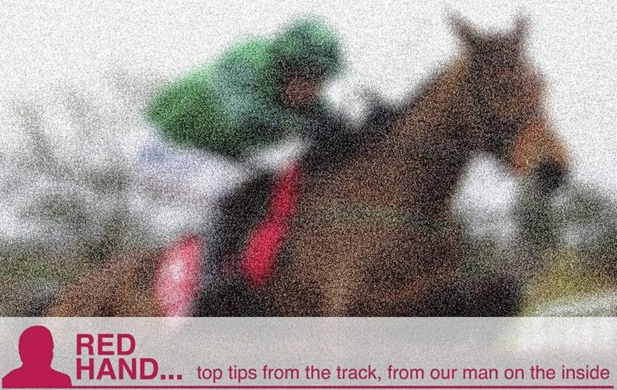 Happy Mondi can claim glory at Sandown