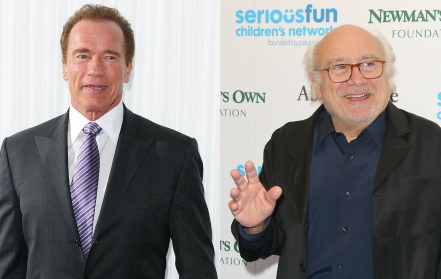 Video Scientists Have Named Two Plants After Arnold Schwarzenegger And Danny Devito The Irish News