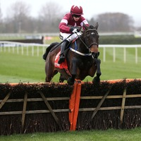 Neville Ring: Apples Jade can face down Willie Mullins' four-pronged attack in Mares' Champion Hurdle at Punchestown