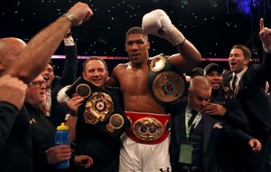 Anthony Joshua knocks out Wladimir Klitschko for the heavyweight title