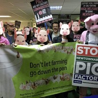James Brokenshire urged to intervene in pig farm controversy