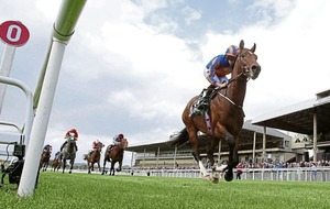 Can Churchill win the Guineas? Oh yes