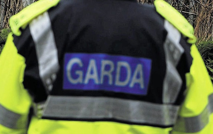 Two men arrested in Dublin under Terrorist Offences Act