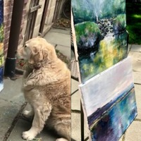 This golden retriever will become your new favourite art critic