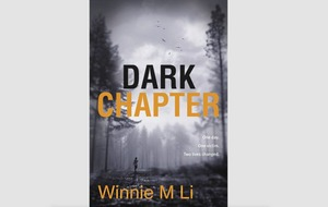 I'm a survivor: Winnie M Li speaks about her novel which mirrors real-life rape in Belfast