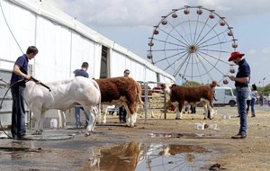 Thousands bask in the sunshine on the opening day of the Balmoral Show