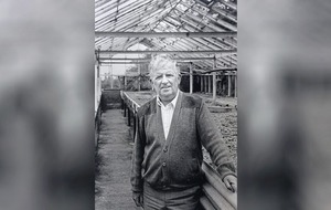Peter McCann: Passionate plantsman who could 'put roots on a walking stick'