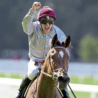 Qemah class can tell at Lingfield