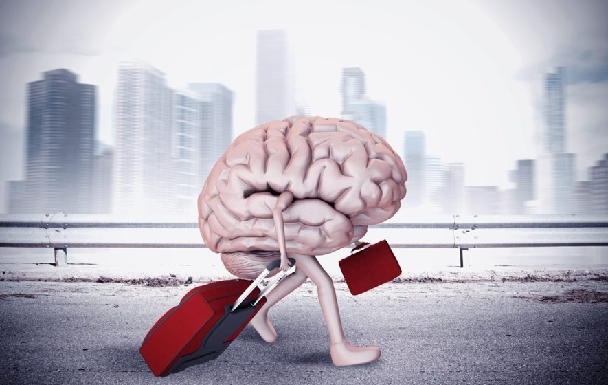 """reversing the brain drain essay Content essay in the first chapter, the term brain drain will be discussed  """" reverse brain drain"""" the international organization for migration."""