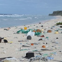 An uninhabited South Pacific British island has the worst plastic pollution in the world