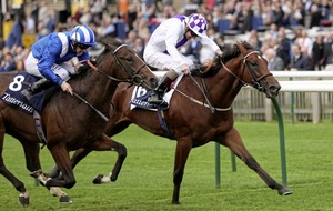 Tasleet can sprint to success at York