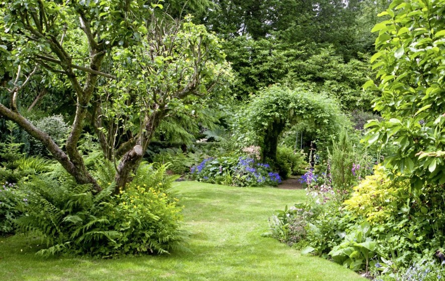 The Casual Gardener: Open season for gardeners