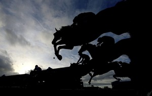 Racehorse breeders call for action to prevent Brexit damage