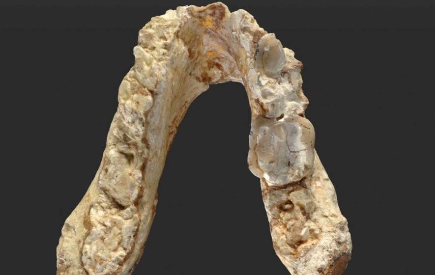 Humans might have come from Europe, not Africa, scientists claim