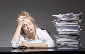 Paperwork overload : red tape is making me see red