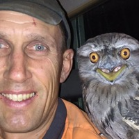 This is probably the most photogenic owl you'll ever see