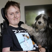 Parents of children with special educational needs settle cases with schools
