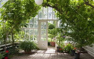 Making the most of your conservatory
