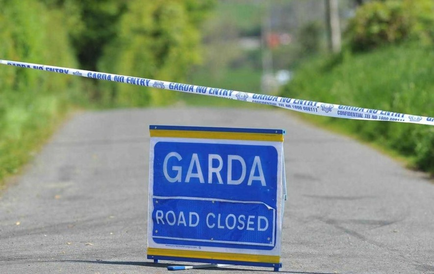Pedestrian killed in car crash in Co Wicklow