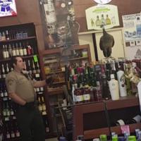 Watch this peacock wreak havoc in an LA off-licence