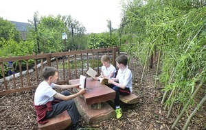 Pupils get back to mother nature with new sensory garden