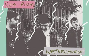 Listen to: Sea Pinks – Watercourse