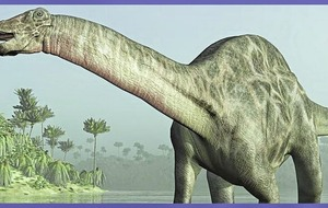 Insurance is for life, health, income - and even your brontosaurus