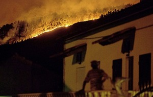 Portugal declares three days of mourning after 61 killed in forest fires