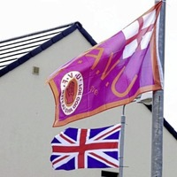 Flags supporting paramilitaries should all be removed, says DUP