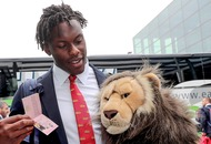 Which animals have the 2017 Lions resembled so far on tour?