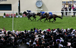 Aidan O'Brien, Ryan Moore and Coolmore dominate Royal Ascot awards