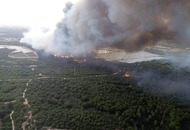 Spanish forest fire threatens habitat of endangered Iberian lynx
