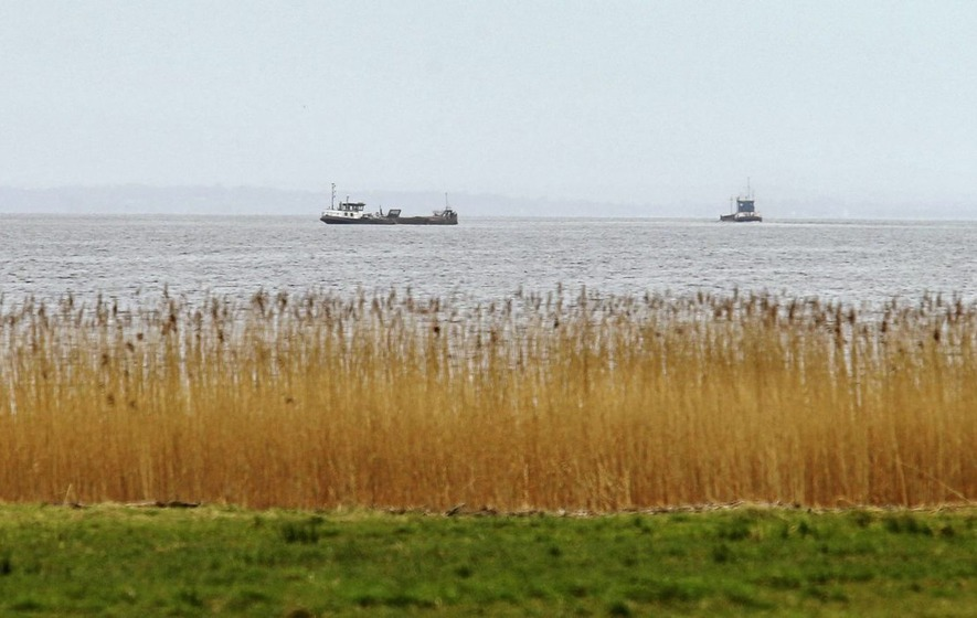 Minister was `wrong' on Lough Neagh sand-dredging, court hears