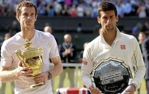 Novak Djokovic expects Andy Murray to play through pain if needed to defend his Wimbledon title