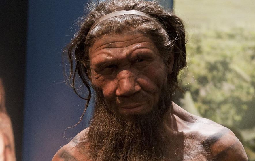 Neanderthals Practised Primitive Dentistry 130 000 Years