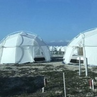 The promoter of failed Fyre Festival arrested on a fraud charge
