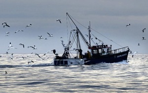 British withdrawal from fishing arrangement 'unwelcome and unhelpful' says Irish government
