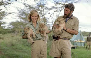 Cult Movie: Born Free is animal magic