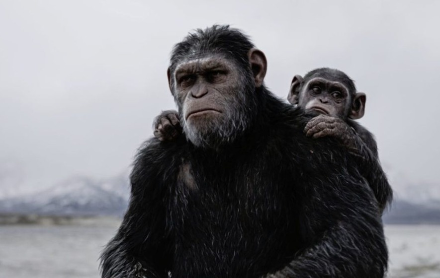 Going ape nearly killed me says Andy Serkis
