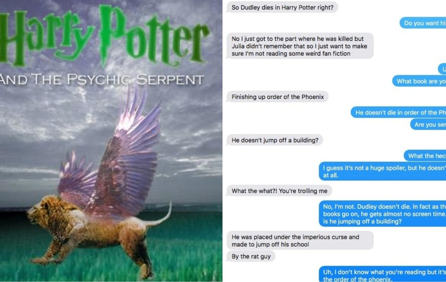 This Harry Potter fan got halfway through the fifth book before realising he was reading fan fiction