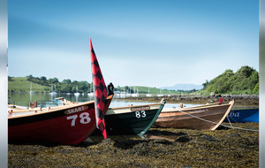 Strangford Lough Skiffie Festival of racing takes place on July 22 and 23