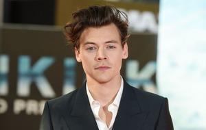 Dunkirk stars praise Harry Styles' acting talent