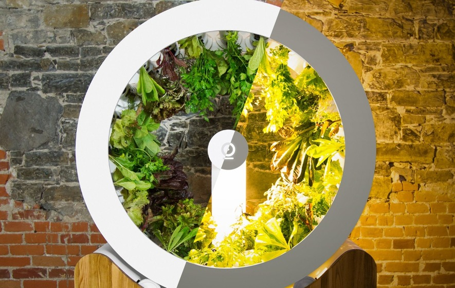 Rotating Indoor Garden Lets You Grow Herbs And Veg Without