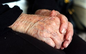 Researchers have found two genes that are linked to Alzheimer's risk