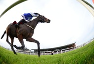 Gary Carson: Star hurdler Airlie Beach can score on the Flat at Killarney