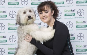 Pudsey, BGT's favourite dog, has died