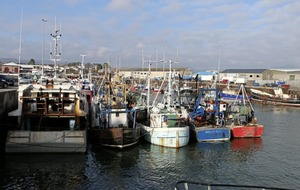 Cod stock recovery presents 'golden opportunity' for Kilkeel