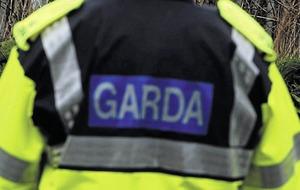 Man arrested after Gardaí seize gun and ammunition