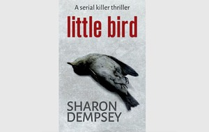 'Women know fear and menace' says new Belfast crime writer Sharon Dempsey