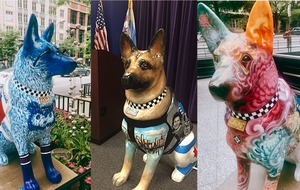 These beautifully decorated dogs are brightening up Chicago